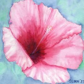 Pink Hibiscus by Katrina Gunn