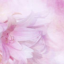 Pink Ladies by Terry Davis