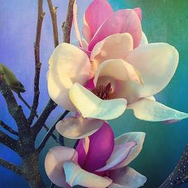 Pink Magnolia by Christina Ford