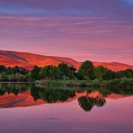 Pink morning light by Lynn Hopwood