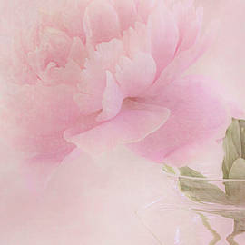 Pink Peony Blossom In Clear Glass Tea Pot - Vertical by Sandra Foster