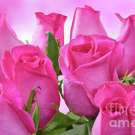 Pink Rose Bouquet by Regina Geoghan