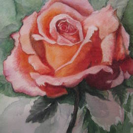 Pink Rose by Farideh Haghshenas
