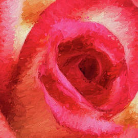 Pink Rose Impressionistic by Sharon McConnell