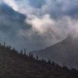 Playing Hide And Seek In The Clouds  by Saija Lehtonen
