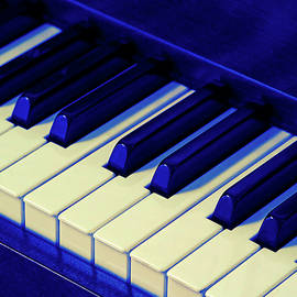 Playing the Blues on Piano by Bill Swartwout