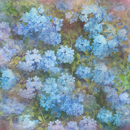 Plumbago Floral Art by Aimee L Maher ALM GALLERY