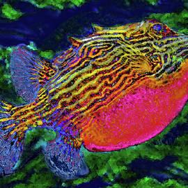 Plump fish. by Andy i Za