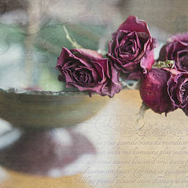 Poignant Memories Dried Roses Still Life Photo with Digital Artwork by Nancy Jacobson