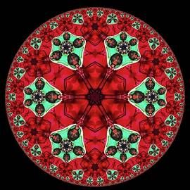 Poinsettia Abstract Kaleidoscope Series 18 by Eileen Backman