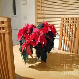 Poinsettia Welcome by Kathryn Jones