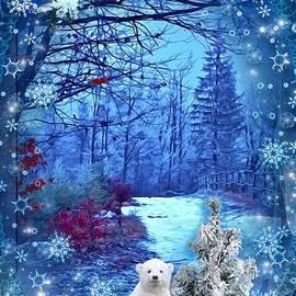 Polar Christmas by Teresa Trotter