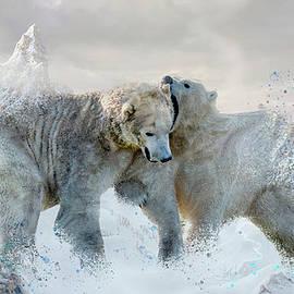 Polar Mountains by Darren Wilkes