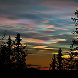 Polar stratospheric cloud in north of Sweden by Tommy Lindbohm