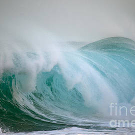 Polihale Power Wave by Debra Banks