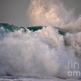 Polihale Wave of Unbridled Joy by Debra Banks