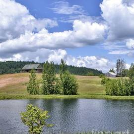 Pond - McMinnville Oregon by Beautiful Oregon