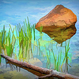 Pond Rock Grass Tree by Jerry Griffin