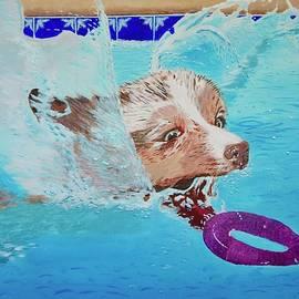 Pool Pup