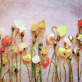 Poppies of Summer's End by Susan Maxwell Schmidt