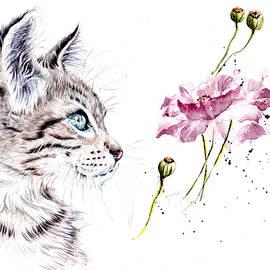 Poppy by Debra Hall