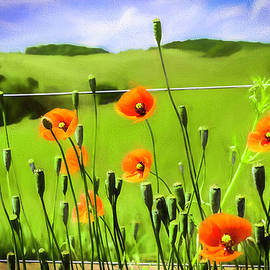 Poppyville by Jim Love