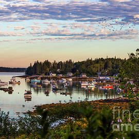 Port Clyde Harbor, Maine