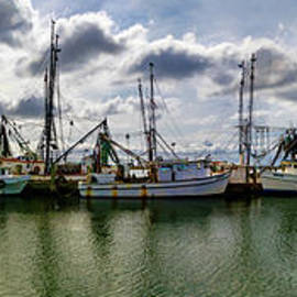 Port Royal Panorama by Norma Brandsberg