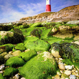 Portland Bill by Edmund Nagele