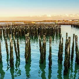 Portland Harbor, Maine by Alexey Stiop