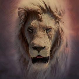 Portrait of a Lion by John Haldane
