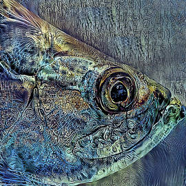Portrait Of An Atlantic Tarpon by HH Photography of Florida
