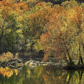 Potomac River Autumn Foliage by Francis Sullivan