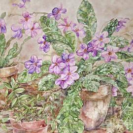 Pots Of Plants by Kim Tran
