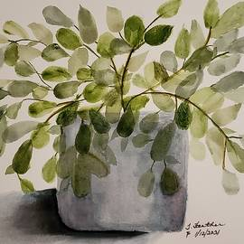 Potted Plant by Terry Feather