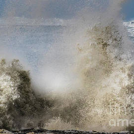 Powerful Nature by Mitch Shindelbower