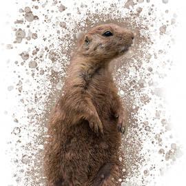 Prairie Dog Portrait - Splatter by Patti Deters