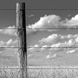 Prairie Fence  by Joseph Rouse