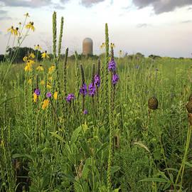 Prairie Wildflowers Silo by Patti Deters