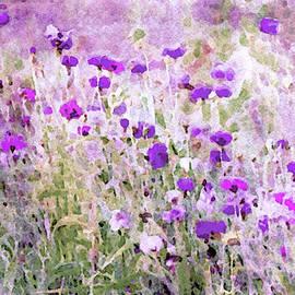 Prairie Wildflowers by Susan Maxwell Schmidt