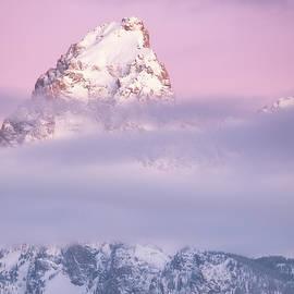 Pretty in Pink by Darren White