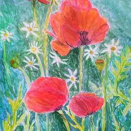 Pretty Poppies and Daisies