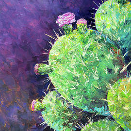 Prickly Little Cactus by Rob Corsetti