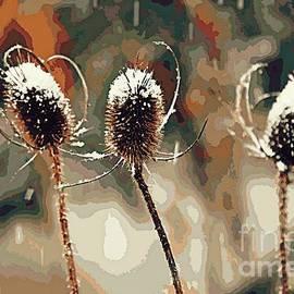Prickly Trio by Chris Bartley