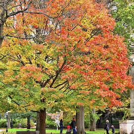 Princeton University -  Autumn Splendor IV by Allen Beatty
