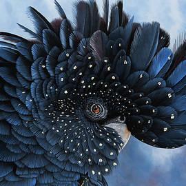 Priscilla black cockatoo portrait by Debra Dickson