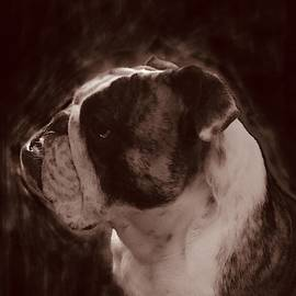Profile Of Angus In Sepia  by Adrienne Hantz Kelley