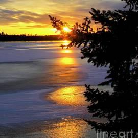 Puddles of Golden Light Splashing on the Lake in Minnesota by Ann Brown Inspirational