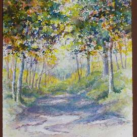 Puddles on the Path by Carolyn Rosenberger