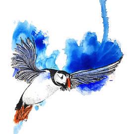 Puffin by Lilia Goyzman